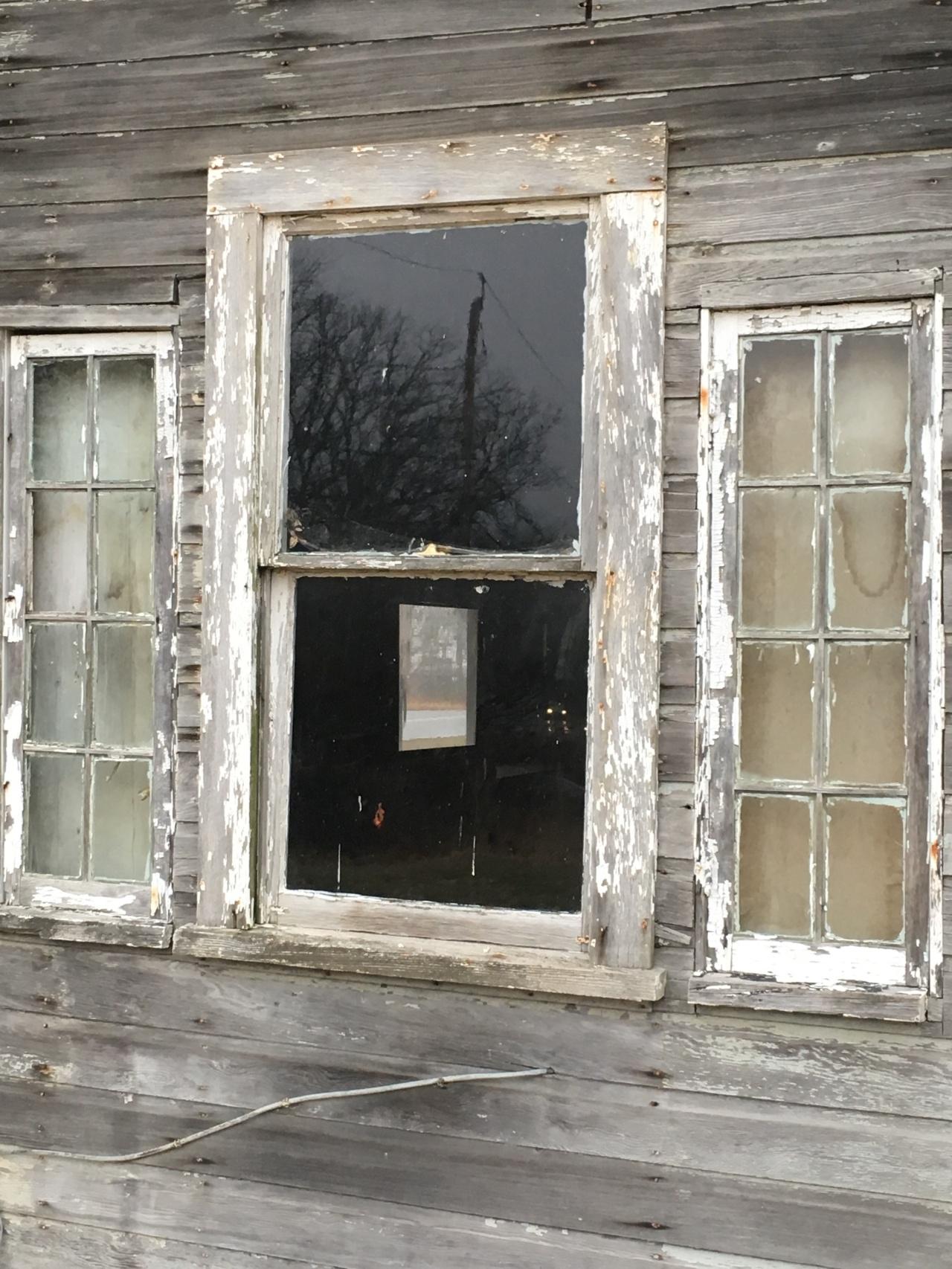 8 x 8 windows on side